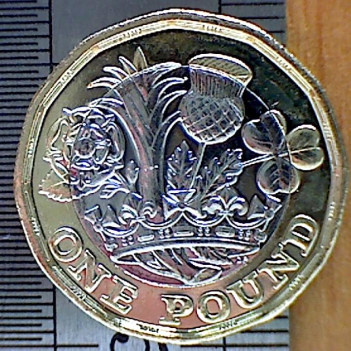 New Pound Reeding Rev.jpg