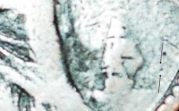 1875cannonball.jpg