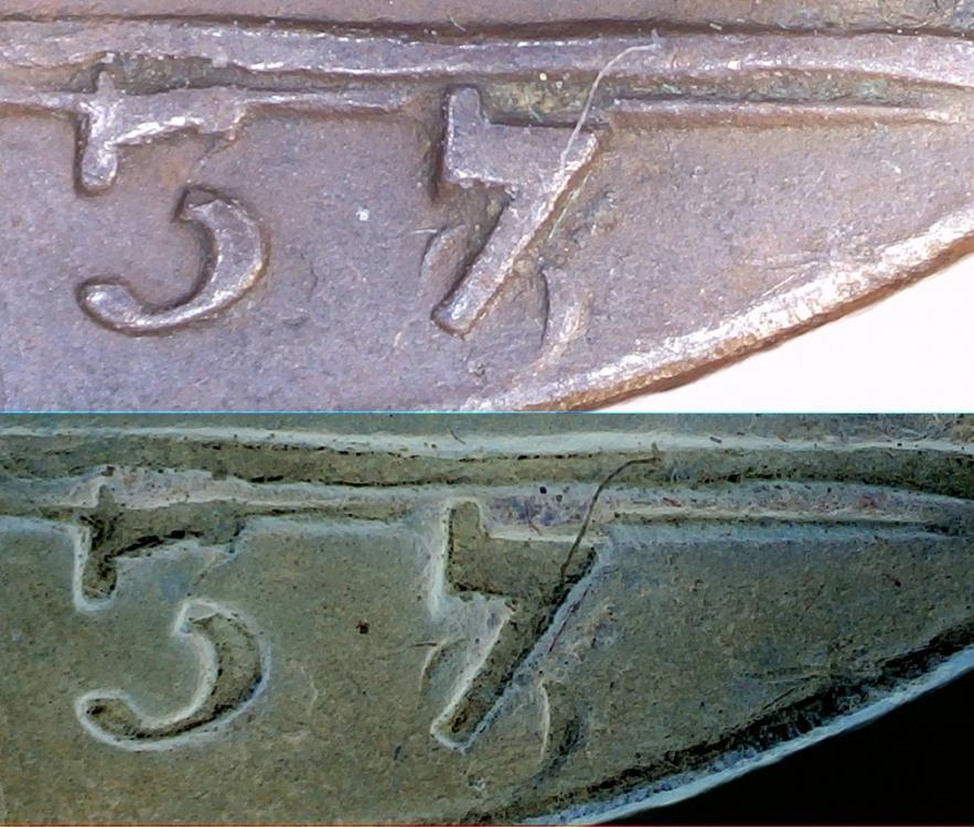 1737-vert.jpg