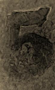 CM180608-162024043 (183x300).jpg