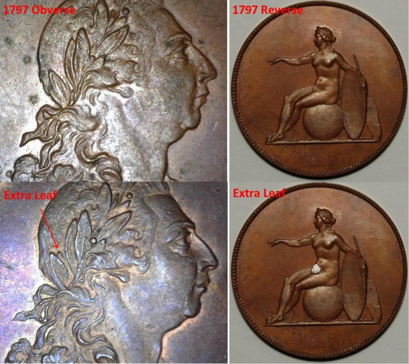 1797 x 4Sized.jpg