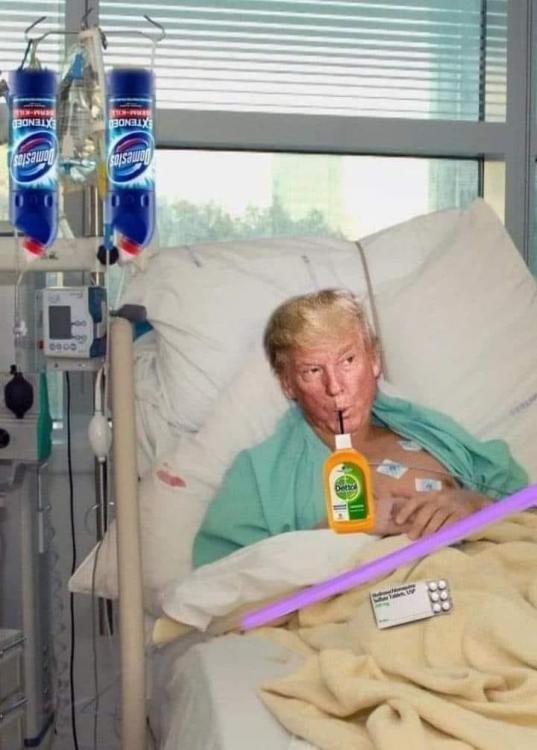 Trump bleach.jpg
