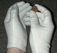 Cotton Coin Gloves from Predecimal